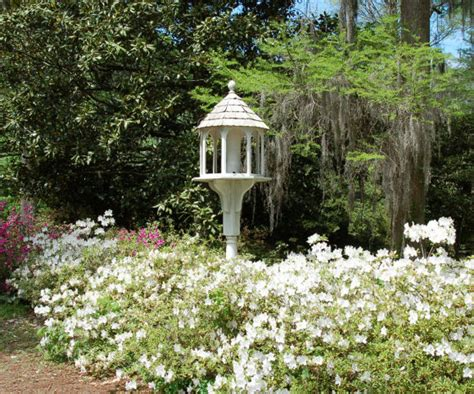 Edisto Gardens by Edisto Memorial Gardens And Surrounding Parks