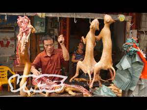 Why Do Dogs Always Want Food Dining On Dogs In Yulin Vice Reports Part 1 2 Youtube