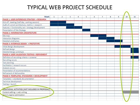 Typical Web Project Schedule Website Design Strategy Template