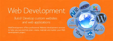 L Web Development by Best Software Company In Jaipur Website Development