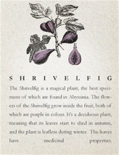 1000 images about herbology class on pinterest