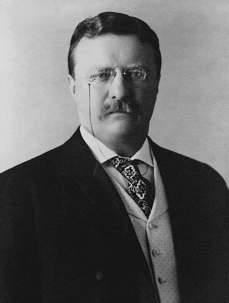 presidency of theodore roosevelt wikipedia the free file president theodore roosevelt 1904 jpg wikipedia