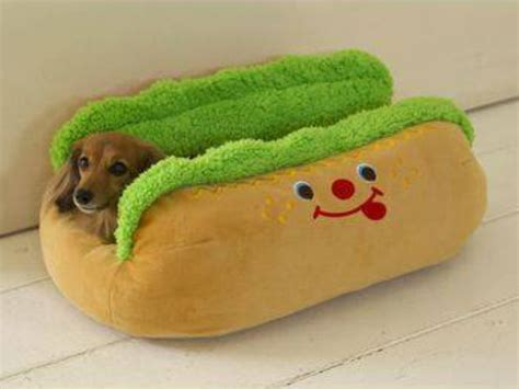 funny dog beds dogs cute animals dog beds adorable funny