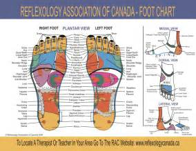 foot mapping canada the foot reflexology chart can help you make a
