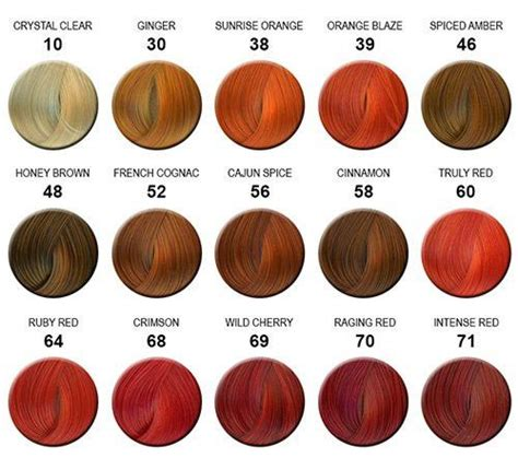 1000 ideas about hair color charts on hair