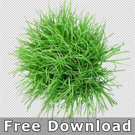 6 best plant layout software free download for windows top view plants 01 cutout plan view plant graphics png