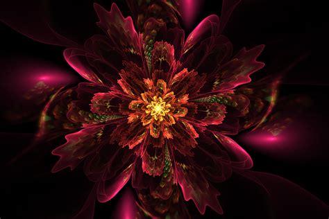illustration floral fractal glow flower