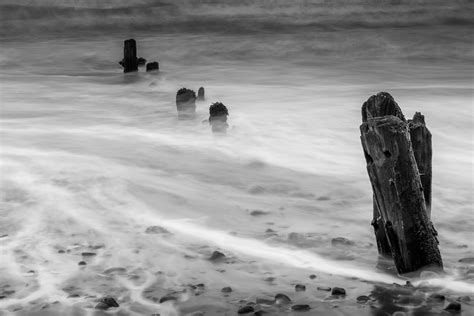 foto gratis mare spiaggia acqua mare inverno bianco  nero