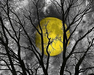 black and yellow tree black white yellow moon tree wall home decor matted