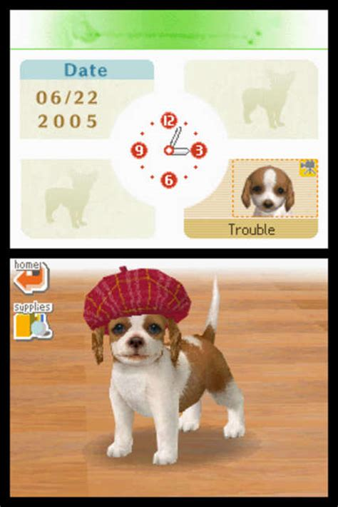 nintendo dogs nintendo ds dogs image search results