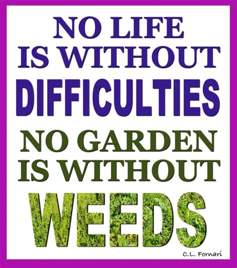 vegetable garden quotes 15 inspiring gardening quotes and sayings by