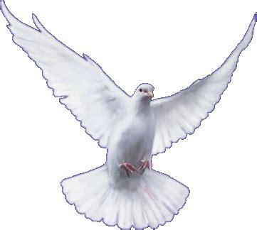 Im An Mba by Menina De Nazareth Pentecostes Tempo Do Esp 205 Rito