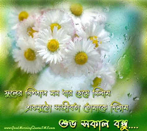 bengali good morning sms bengali good morning sms shuprovat wishes messages quotes