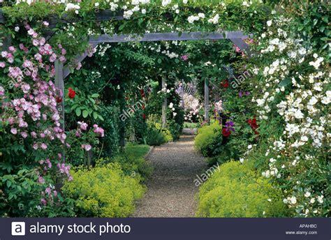 Garden Arch For Climbing Plants Mannington Norfolk Arbour Wooden Garden Arch