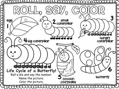 coloring pages of butterfly life cycle printable life cycle butterfly coloring life cycles