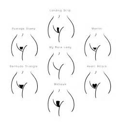 pubic hair styles for style your pubic hair new styles