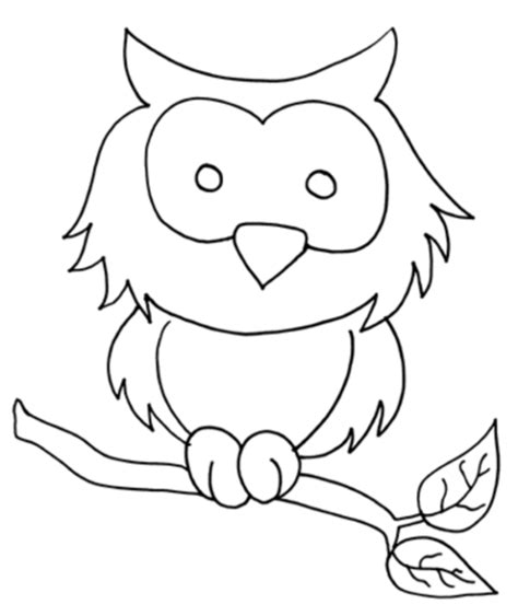 owl printables for preschoolers owl coloring pages free printable pictures coloring