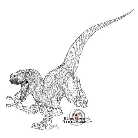coloring pages of velociraptor 87 velociraptor coloring pages dinosaur 5 coloring