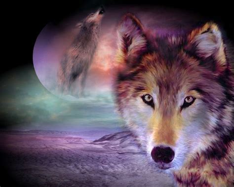 computer wallpaper wolf wolf desktop backgrounds pictures wallpaper cave