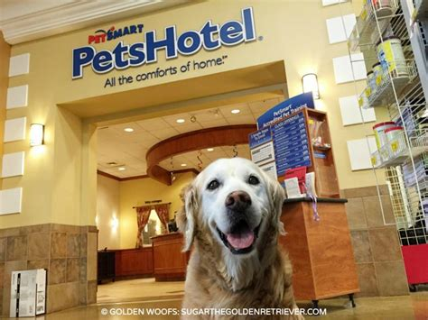 Petsmart Cottage by Your Pet S Invited To Petsmart Petshotel Social