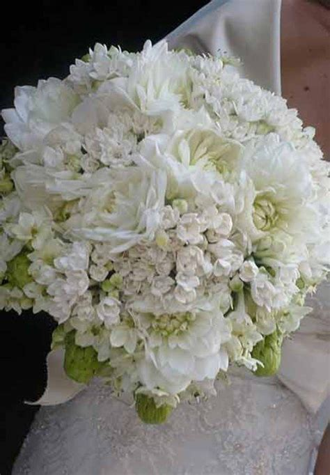 fiori x sposa oltre 25 fantastiche idee su bouquet da sposa su