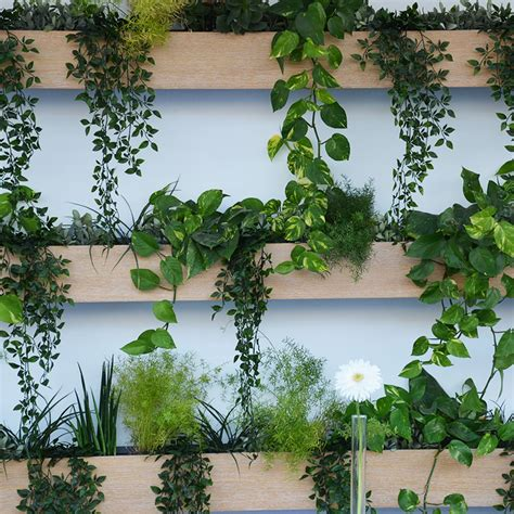 Faire Mur Vegetal by Comment Faire Un Mur V 233 G 233 Tal But