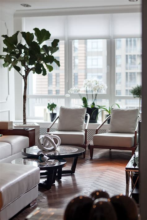 indoor plant ideas indoor plant ideas interior design ideas
