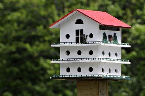 Purple Martin House by Purple Martin House Gardens Gt