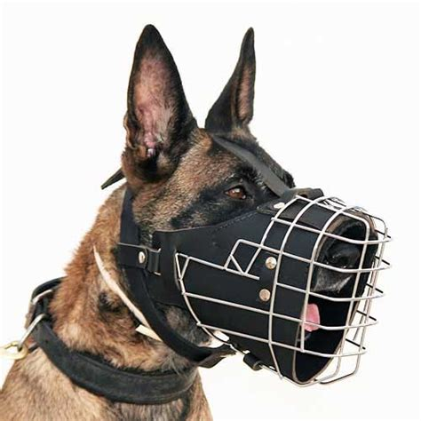 how much water should a puppy drink during potty wire cage muzzle with leather padding for agitation m57 1029 padded