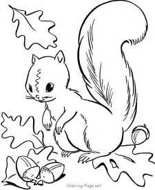 Fall coloring page squirrel acorns harvest
