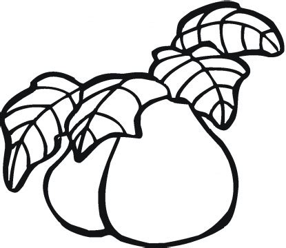 guavas coloring pages to kids learn to coloring