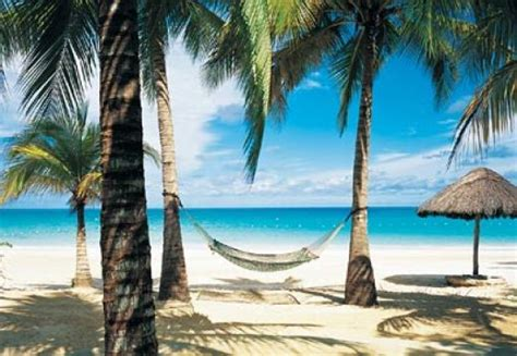 Trips To Jamaica For Couples Negril Jamaica Vacations Advice For Single Hubpages