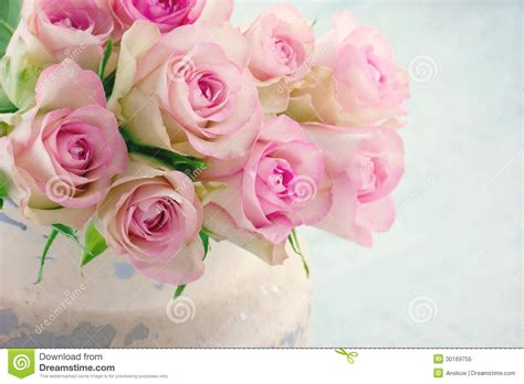 Pink roses in a shabby chic metal bucket stock image image 30169755