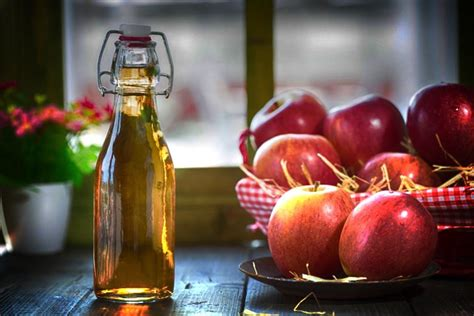 cuka apel pelangsing alami otc digest