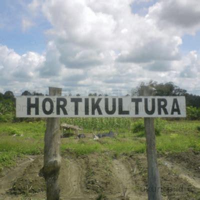 pemahaman budidaya hortikultura secara organik solusi
