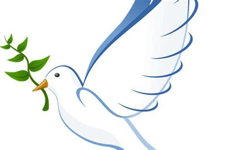 imagenes de palomas blancas de la paz imagen de jesus con una paloma mejores imagenes de