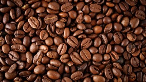 Coffee Beans the coffee guide arlene howard pr