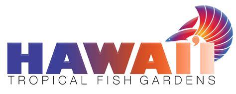 of hawaii logo hawaii logo png