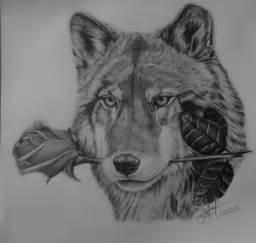 imagenes para dibujar a lapiz de lobos lobo dibujos a lapiz buscar con google lobos