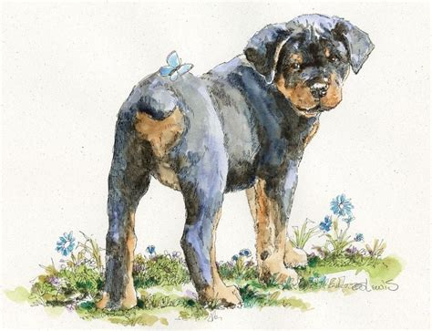 rottweiler with blue charming rottweiler puppy with blue butterfly on design tattooimages biz