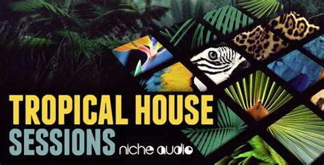 house music sle packs free tropical house sessions sle pack by niche audio producerspot