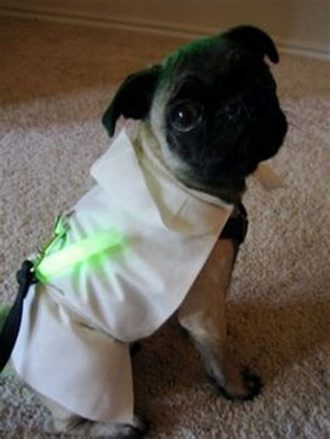 pug yoda costume for sale master jedi pug tech and popsugar