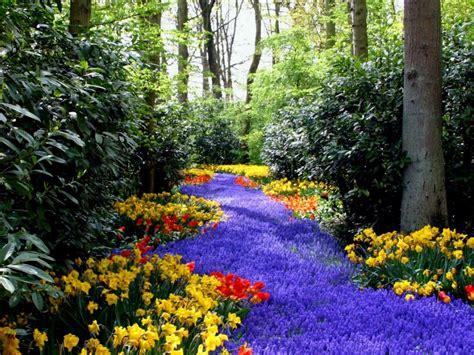 Imagenes De Paisajes Florales | paisajes de ensue 241 o paisajes de flores