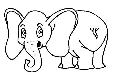 orejas de elefante para colorear maestra de infantil los elefantes caracter 237 sticas