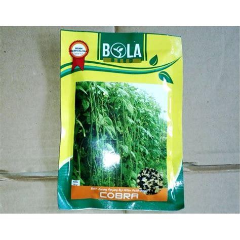 Benih Kacang Panjang Global Seed jual benih kacang panjang cobra