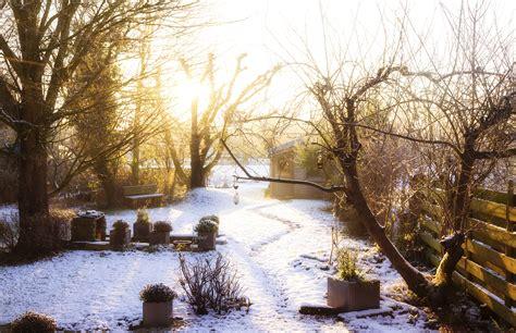 garten winter schnee im garten sch 228 dlich oder sch 252 tzend f 252 r pflanzen