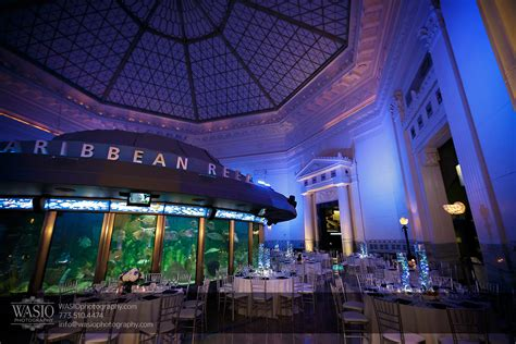 Shed Aquarium In Chicago by Chicago Shedd Aquarium Wedding Caitlin Andres