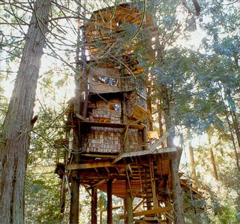 tree house design and construction treehouse construction plans house plans