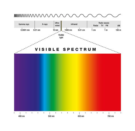 electromagnetic spectrum visible light electromagnetic spectrum and visible light digital art by