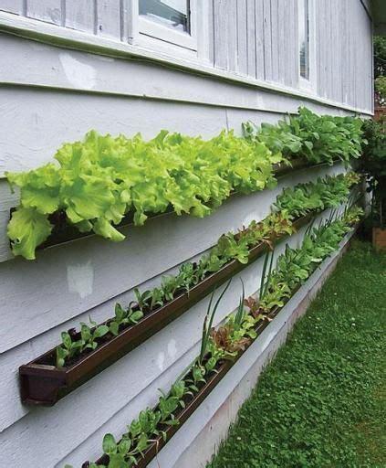 Gutter Planter Box by
